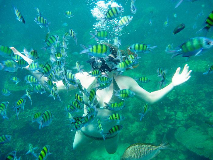 Des fonds sous-marins idéaux pour le snorkeling ou la plongée
