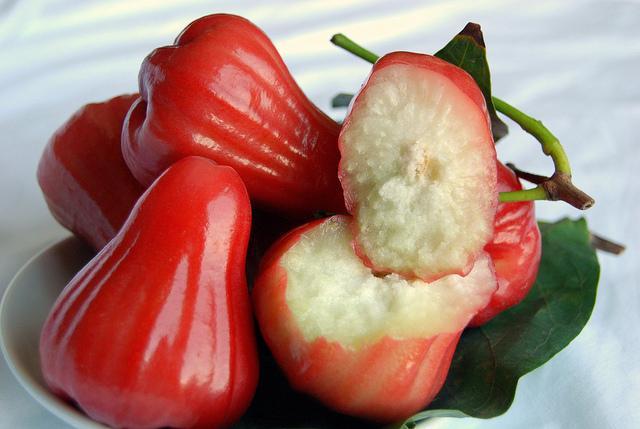 rose-apple-chompoo