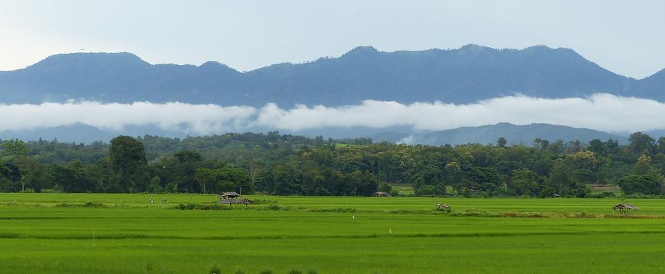 Chiang Mai 6