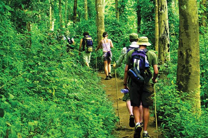 Trek dans la jungle de Chiang Mai - Cr. viator.com