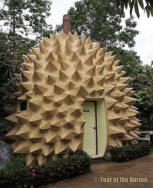"Chambre ""Durian"" - Cr : yearofthedurian.com"